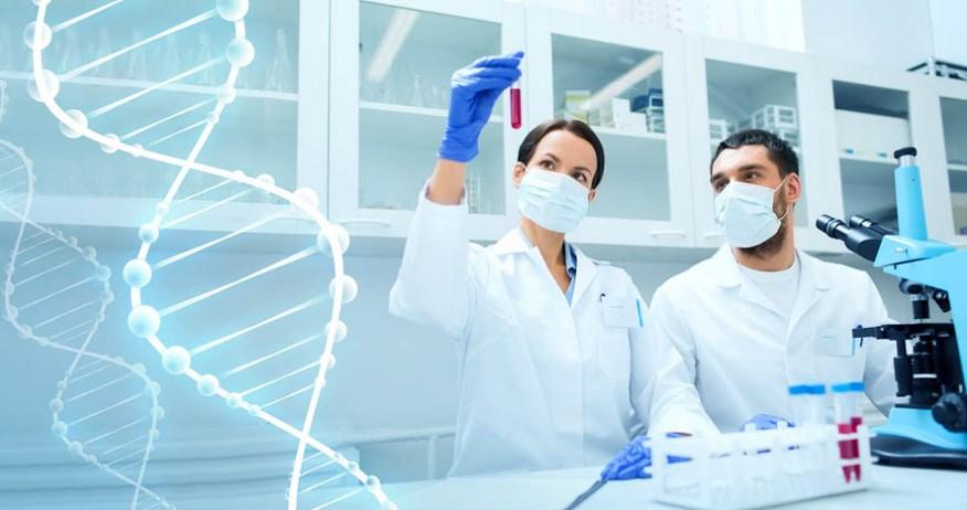 que estudia la ingenieria genetica