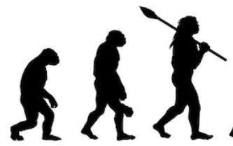 que estudia la antropologia